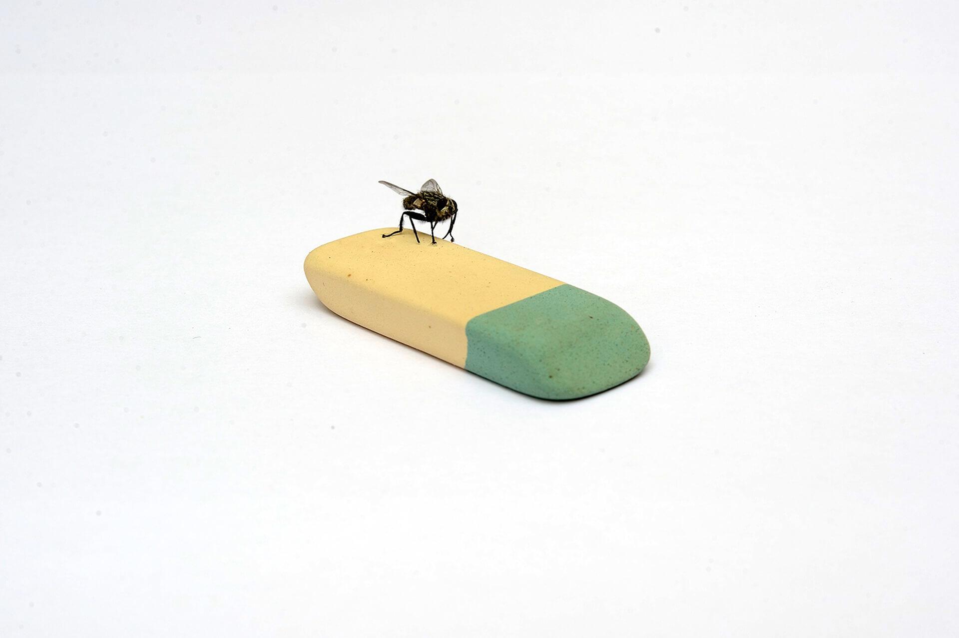 """Mustapha Akrim, """"On Rubber"""", dessin d'une mouche sur une gomme, arts contemporains au Maroc"""