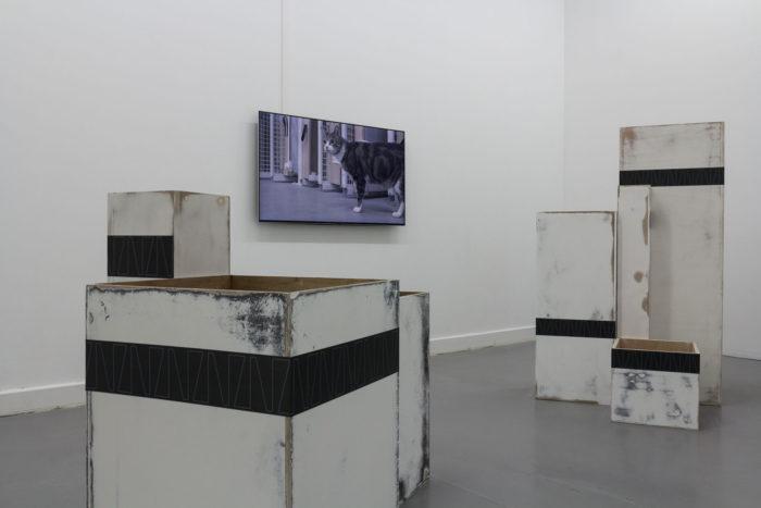 marie ouazzani, réservée, exposition de caisses et de vidéos, arts contemporains au Maroc