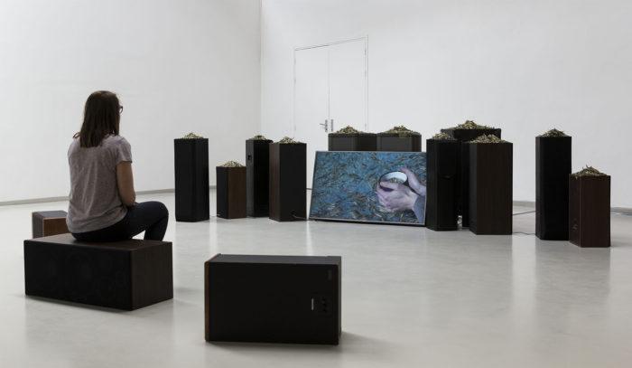 marie ouazzani, Séance infusion, installation de plantes, vidéos et son, arts contemporains au Maroc