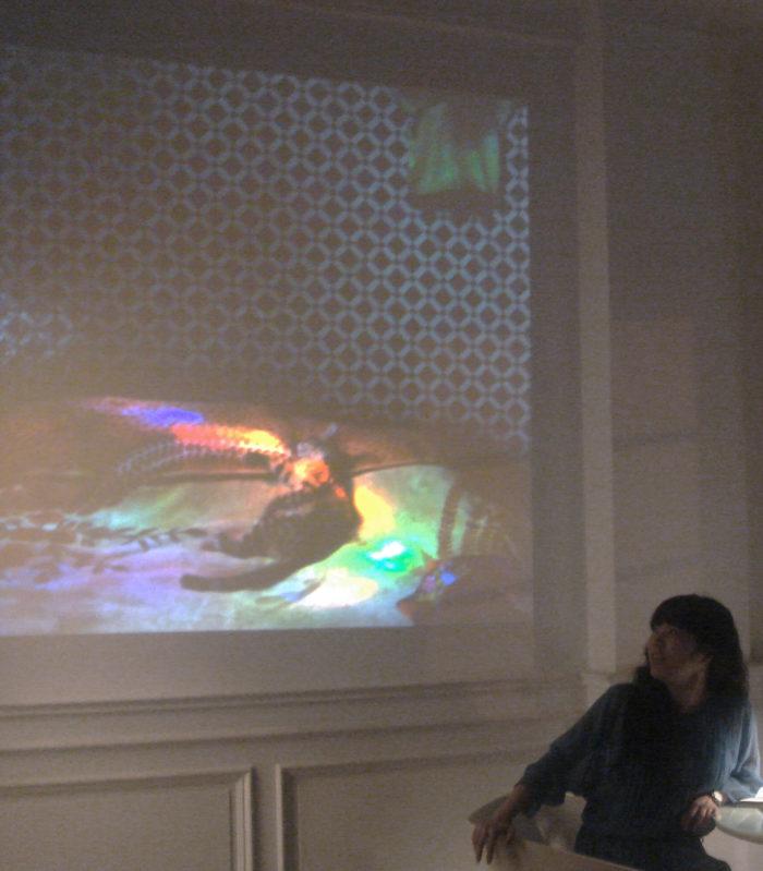 Megumi Matsubara, soirée de présentation de ses projets réalisés au Maroc