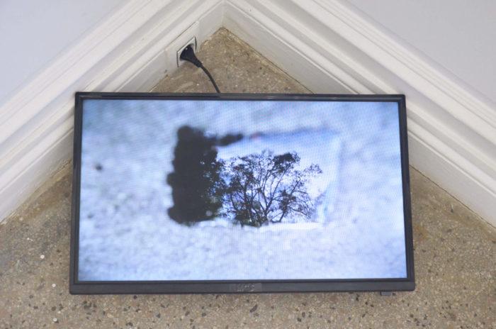 vue de l'exposition de vidéos présentées par Proyector dans le cadre de leur curators zone