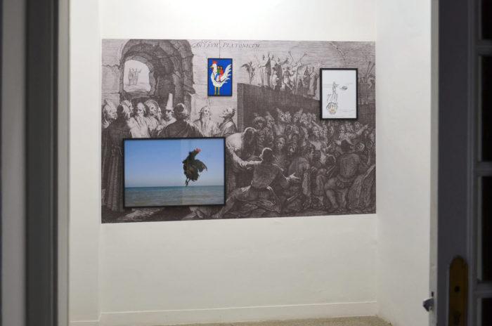 Attokoussy, vue de l'exposition au Cube - independent art room, Mohammed Laouli, Barouk, la poule, 2017