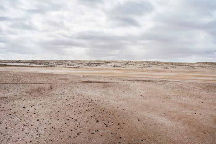 Abdessamad El Montassir, Al Amakine, une cartographie des vies invisibles, 2016-2017. Série de photographies de plantes et de paysages qui, à partir des poésies et des savoirs oraux, permettent de dessiner une nouvelle cartographie du Sahara au Maroc.