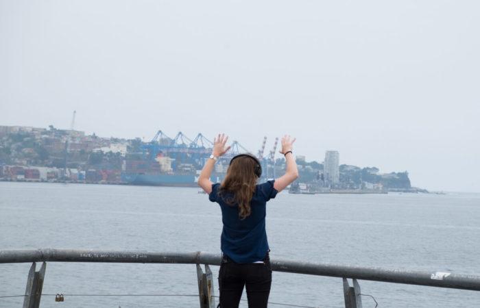Anna Raimondo, Nuevas fronteras del bienestar del ecosistema vaginal #2, Valparaiso
