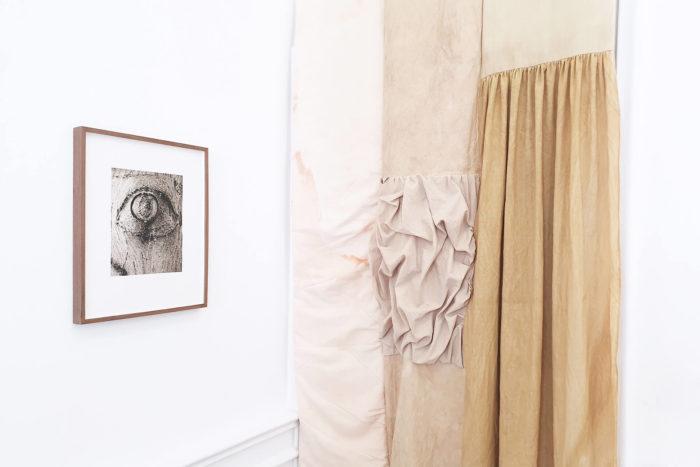 Vue d'exposition, Leave No Stone Unturned [Remuer la terre], curatée par Clelia Coussonnet au Cube-independent art room, 2019. Corinne Silva,