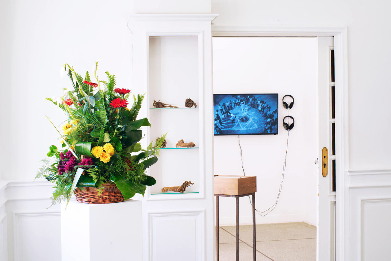 """Vue d'exposition, Leave No Stone Unturned [Remuer la terre], curatée par Clelia Coussonnet au Cube-independent art room, 2019. Kapwani Kiwanga, """"Flowers for Africa – Morocco"""", bouquet. Hanan Benammar, """"Desert Garden"""", installation et son. Sasha Huber & Petri Saarikko, """"Remedies – Remède Haïti"""", vidéo."""