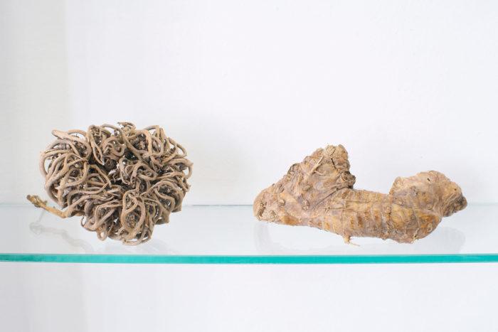 Vue d'exposition, Leave No Stone Unturned [Remuer la terre], curatée par Clelia Coussonnet au Cube-independent art room, 2019