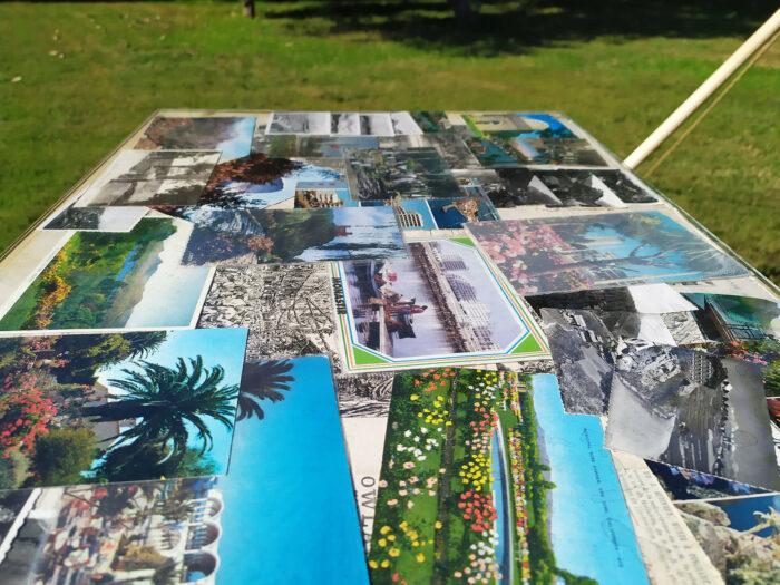 L'arbre qui cache la forêt_instalaltion artistique de Badr El Hammami dans le Jardin Botanique de Rabat, états d'urgence d'instants poétiques, Bouchra Salih 3