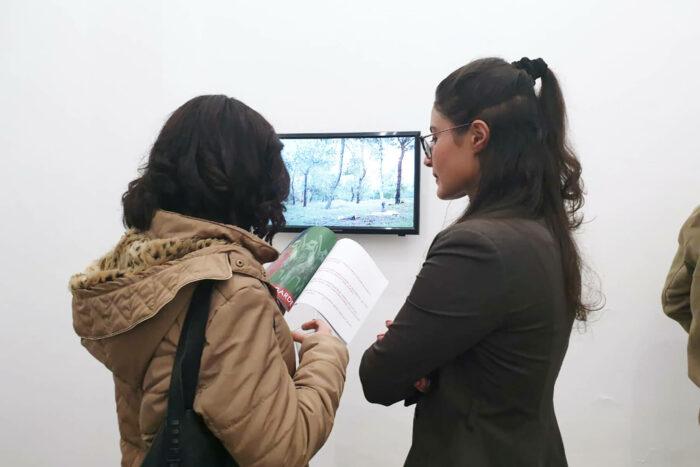 Vue de l'exposition Green Book au Cube, Tewa Bernosa, Sarri ElFaitourri, durant travelling narratives