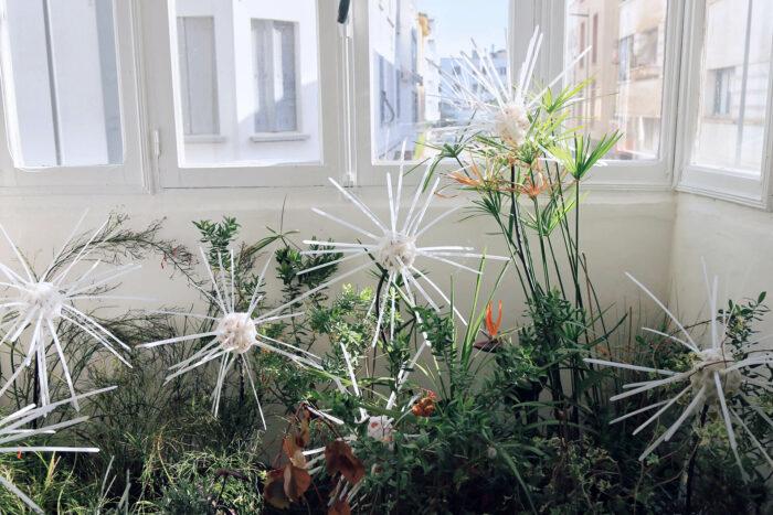 Lotfi Souidi, Wild Flowers, 2020