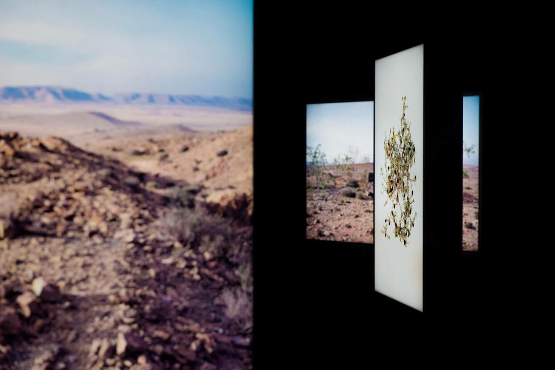 Abdessamad El Montassir, Surgir des cendres, vue de l'exposition pour la Biennale Chronique à Aix Marseille sahara maroc arts contemporains