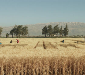 Jumana Manna, Wild Relatives, film vidéo